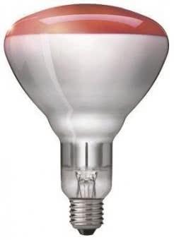 Philips Infrarotlampe R125 250W 57521025