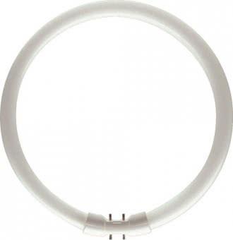 Philips L-Lampe TL5-C 55W-840